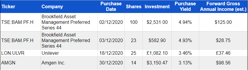 Investment purchases December 2020